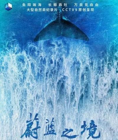 世界海洋日| 用这些记载片拨动孩子庇护海洋的心