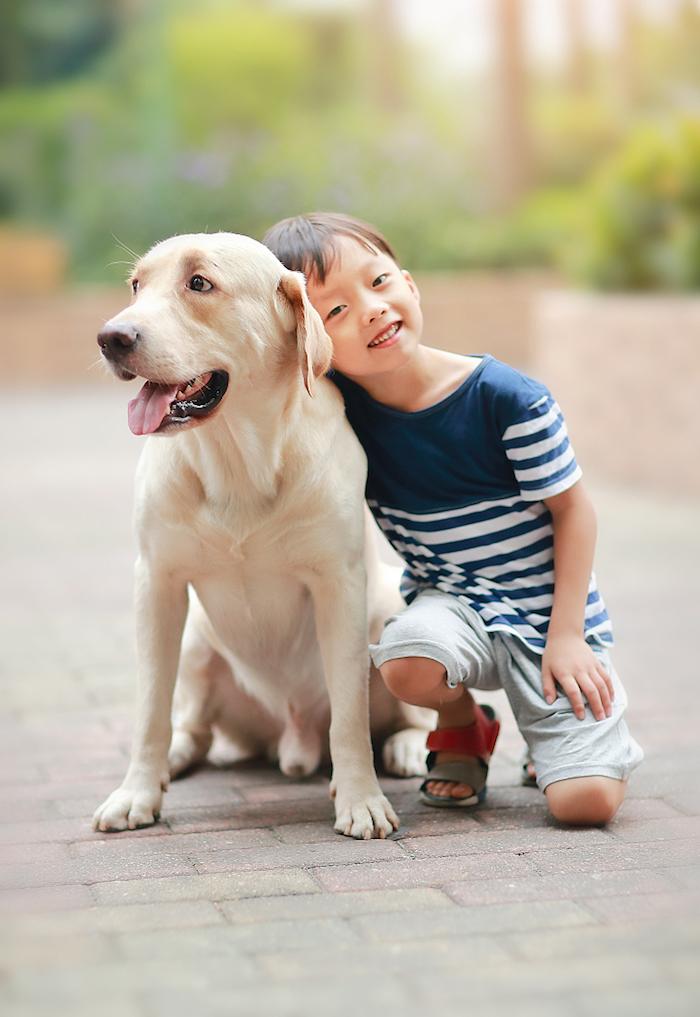 女明星被曝弃狗、占超市廉价,怙恃若何增进孩子的仁慈与爱意