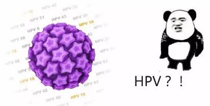 传染了HPV就会得宫颈癌吗?你必需知道这6点!