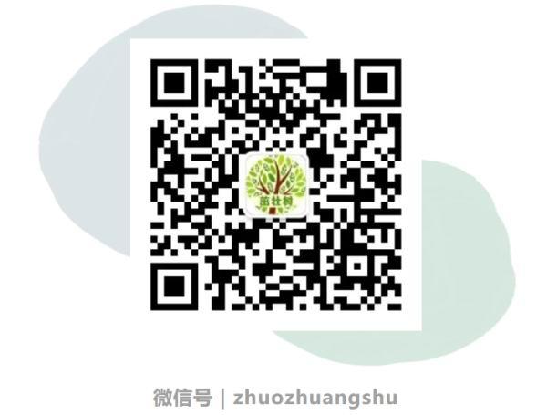 高考绩绩陆续发布,上海教育测验院党委书记教你填自愿插图2
